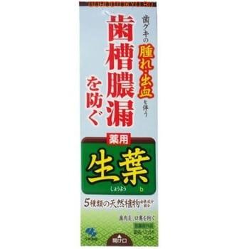 KOBAYASHI Паста зубная для профилактики заболеваний десен «Японский кипарис», 100 гр. от GorodTokyo