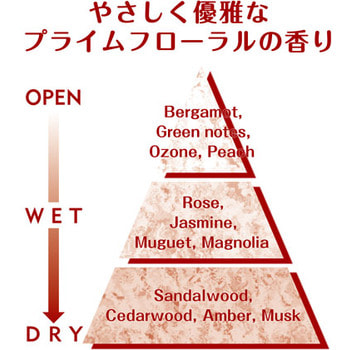 """Nissan """"FaFa Beauty"""" Жидкое концентрированное и ароматизированное средство для стирки, с ароматом цветов, мускуса и сандалового дерева, сменная упаковка, 360 мл. (фото, вид 2)"""