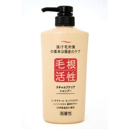 """Junlove """"Scalp clear shampoo"""" Шампунь для укрепления и роста волос, 550 мл"""