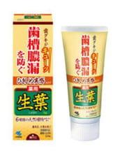 KOBAYASHI Паста зубная для профилактики заболеваний десен «Японский кипарис и белая береза», 100 гр.